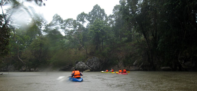 Kayaking In Rainforest Paradise