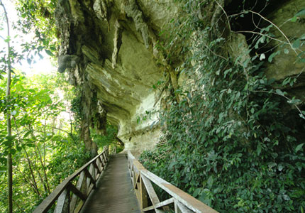 4D3N Miri City + Niah Caves + Mulu Caves