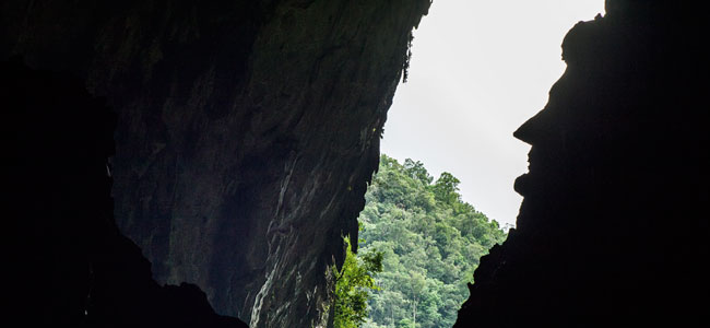 2D1N Mulu Caves