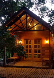 2D1N Borneo Natural Resort (Sukau Wildlife Tours)